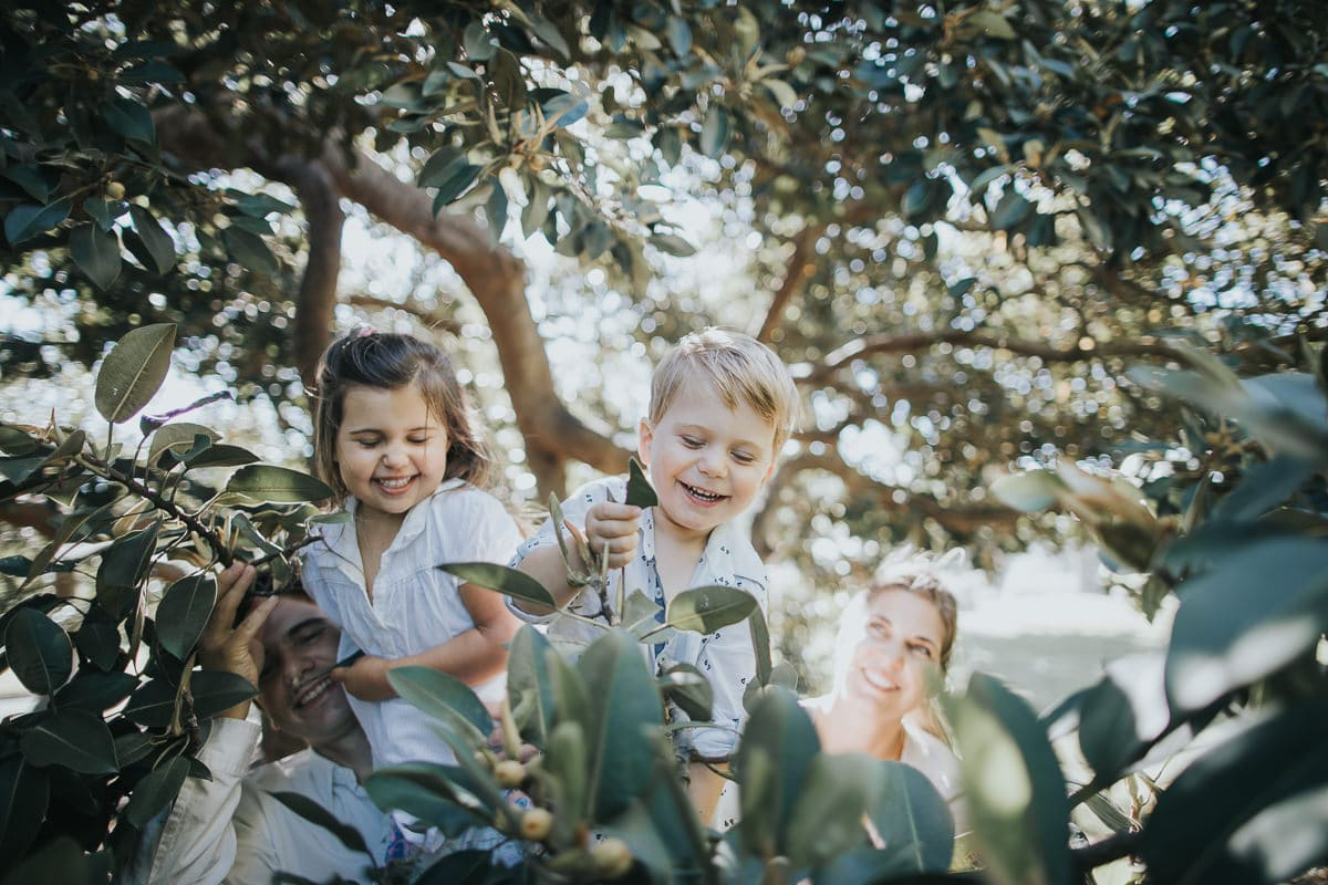kids having having fun climbing trees in Melbourne Park - Family photos as a gift - memories for life